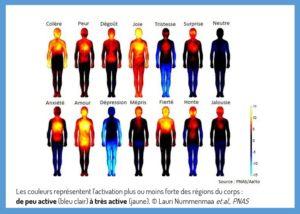 Carte des émotions_Source PNAS/Aaltoe